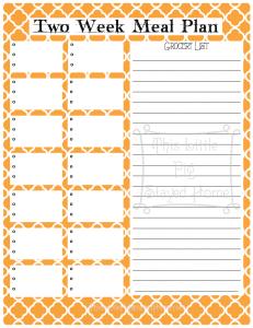2 week planner