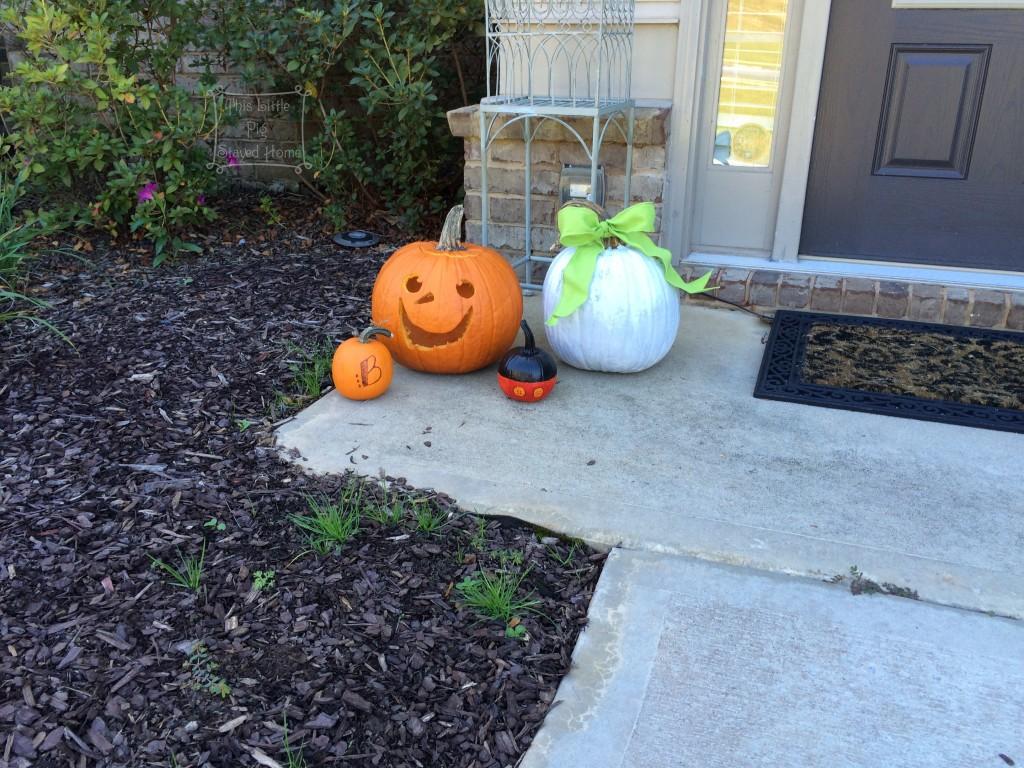 pumpkin patch 10